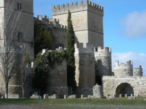 castillo entorno villalon de campos